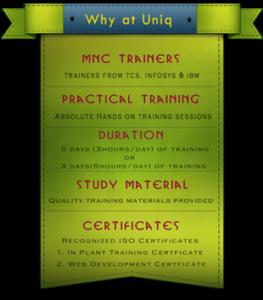 Internship at Uniq Technology